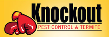 Knockout Pest Control and Termite Murrieta